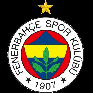 U18 Fenerbahce Beko logo