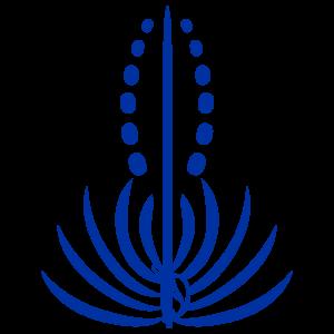 Chaminade Silverswords logo