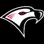 Florida College Falcons