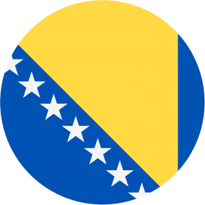 Bosnia and Herzegovina (W) logo