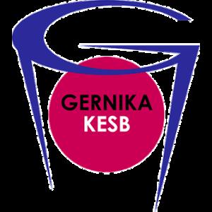Lointek Gernika Bizkaia logo