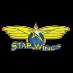 Starwings Basket Regio Basel