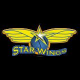 Starwings Basket