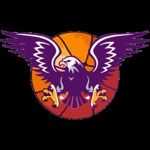 Pitesti logo