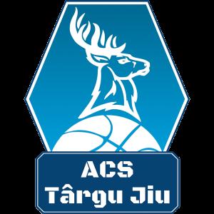 ACS Targu Jiu logo