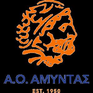 Amyntas logo