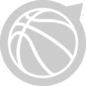 Mersey Tigers logo