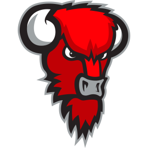 LoKoKo Bisons logo