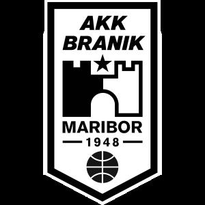 Branik logo