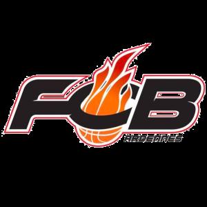Flammes Carolo logo