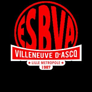 Villeneuve d'Ascq logo