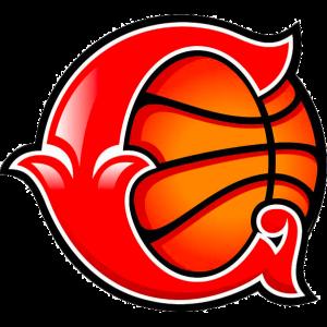 Sparta&K Vidnoje logo