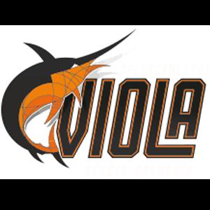 Viola Reggio Calabria logo