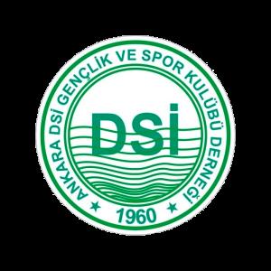 Ankara DSI logo