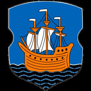 Dynamo Polotsk logo