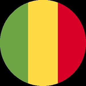 U17 Mali logo