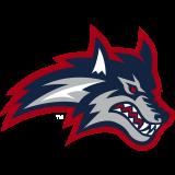 Stony Brook Seawolves