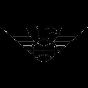 Newcastle Eagles logo