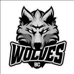 Dzukija Alytus logo