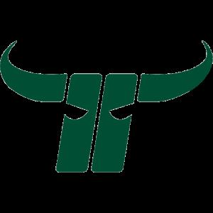 Kapfenberg Bulls logo