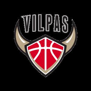Salon Vilpas logo