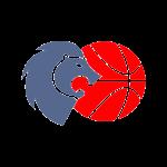 Logo Rio Breogan