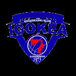 Logo Igokea