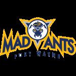 Logo Fort Wayne Mad Ants