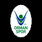 Logo OGM Ormanspor