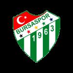 Logo Frutti Extra Bursaspor