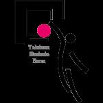 Logo Telekom Baskets Bonn