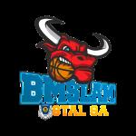 Logo Arged BMSlam Stal Ostrów Wielkopolski