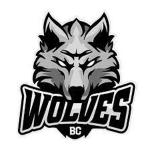 Logo Dzukija Alytus
