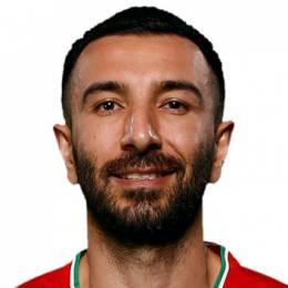 Hamed Hosseinzadeh