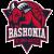 Baskonia II logo