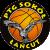 Rawlplug Sokól Lańcut logo
