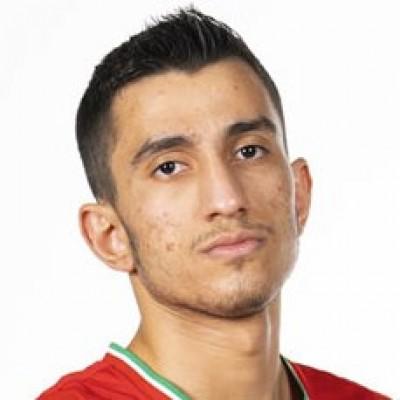 Mohammadsina Vahedi