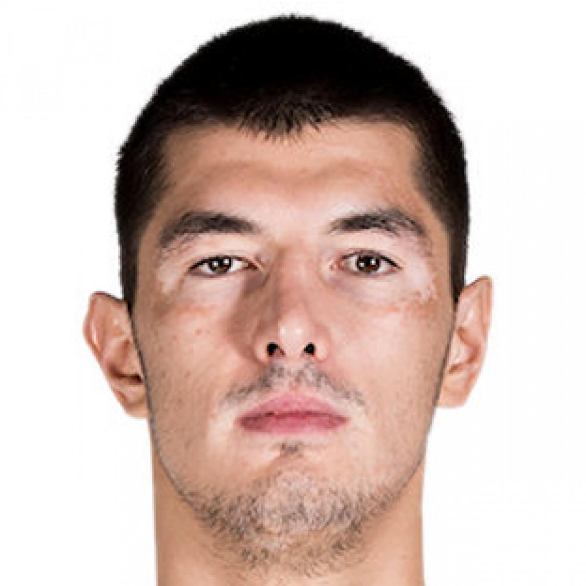 Luka Mitrovic