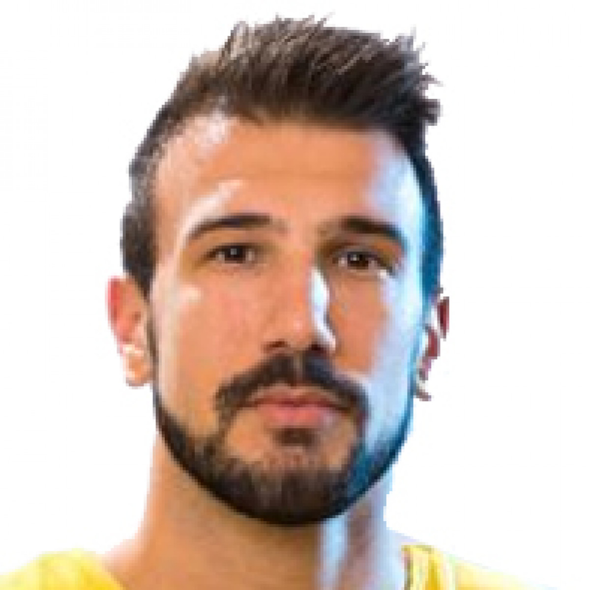 Andro Anzulovic
