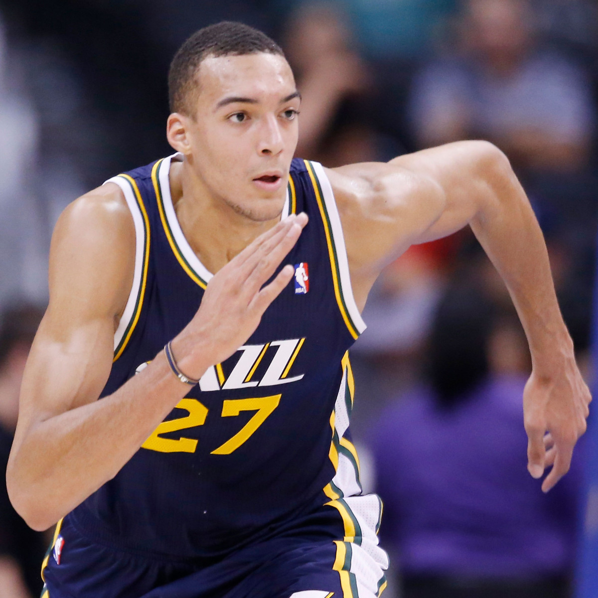 Photo of Rudy Gobert, 2013-2014 season