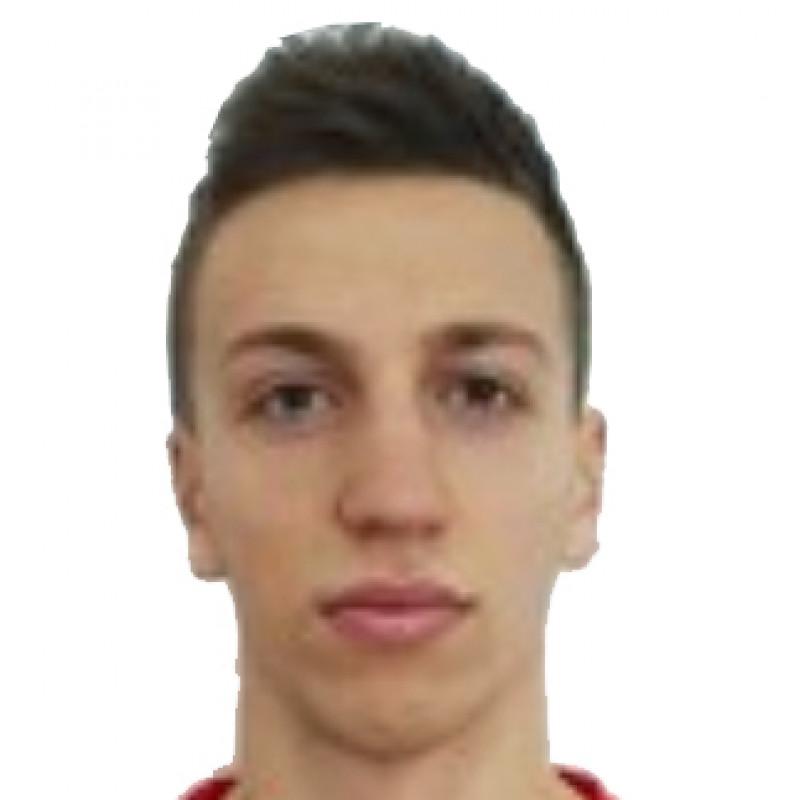 Milan Luzajic
