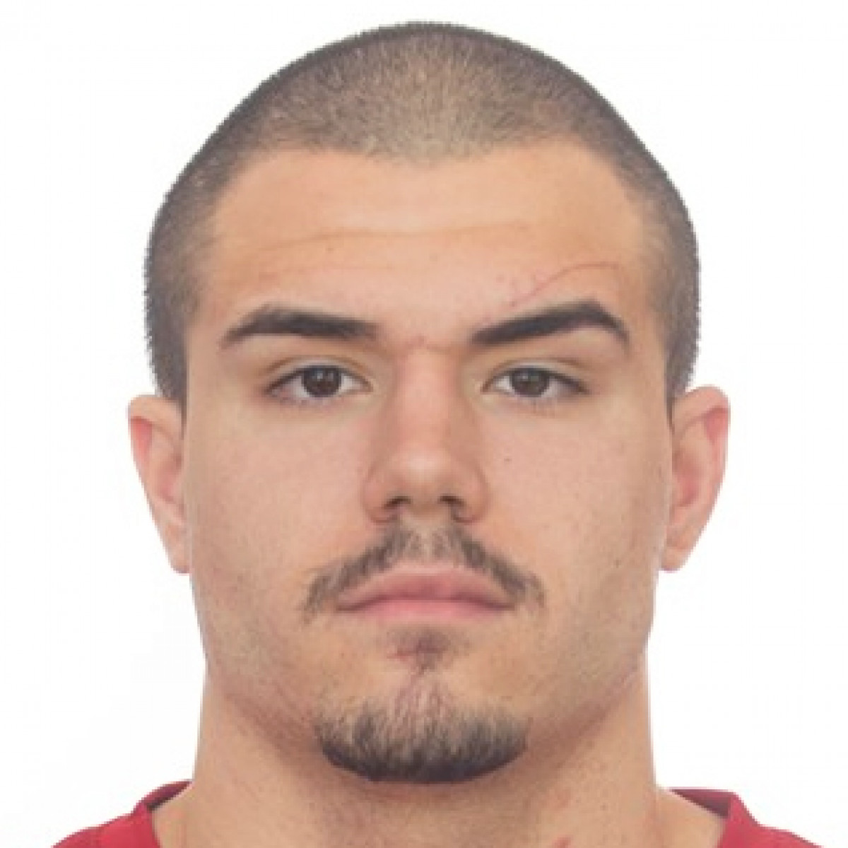 Pavle Mihajloski